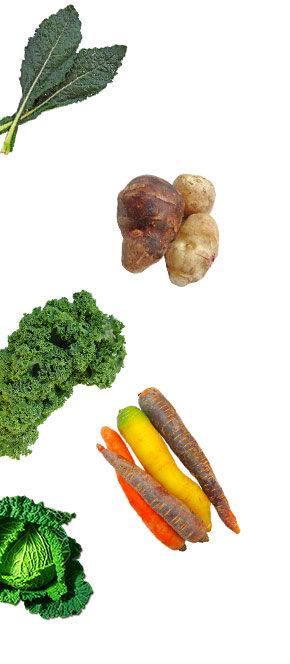 vegetable left 2